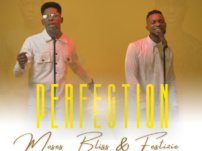 [Music, Lyrics + Video] Moses Bliss – Perfection Ft. Festizie